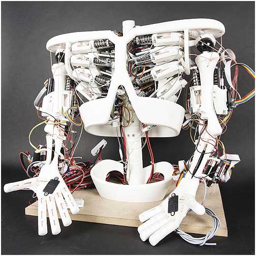 The torso of the Roboy robot developed by the Artificial Intelligence Laboratory at the University of Zurich. The entire robot uses more than 50 brushless dc motors combined with gearheads and encoders from maxon precision motors