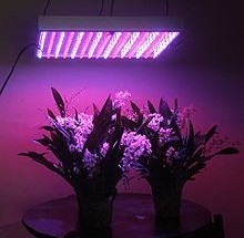 Grow Lights Market