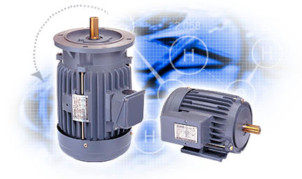 Inverter-duty-motors