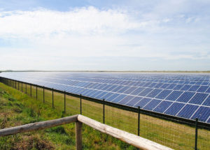 Solar and renewable energy trends in 2019