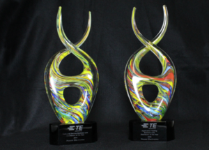 Mouser Electronics Honored with Two Business Unit  Distributor of the Year Awards from TE Connectivity